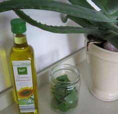 Maak je eigen aloe vera olie met 2 simpele ingredienten. Verse aloe vera bladeren en biologische plantaardige olie.