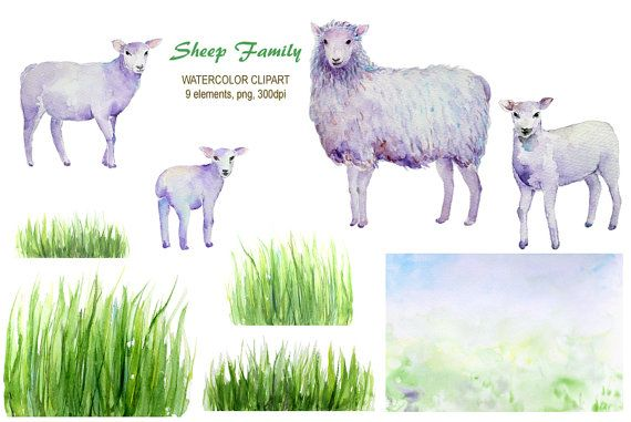 Watercolor clipart  hand drawn sheep and lambs by CornerCroft