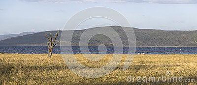 Peaceful view on the lake Nakuru. Africa. Kenya.