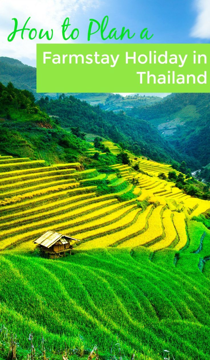 Looking to do Thailand a little differently? How to book a farmstead ...