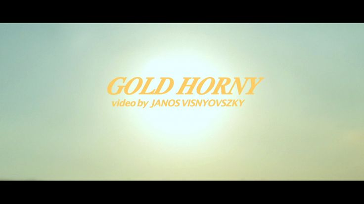 GOLD HORNY / VIDEO BY JANOS VISNYOVSZKY / https://vimeo.com/69305539