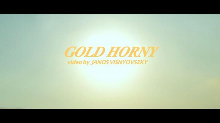 GOLD HORNY / VIDEO BY JANOS VISNYOVSZKY / https://vimeo.com/69305539