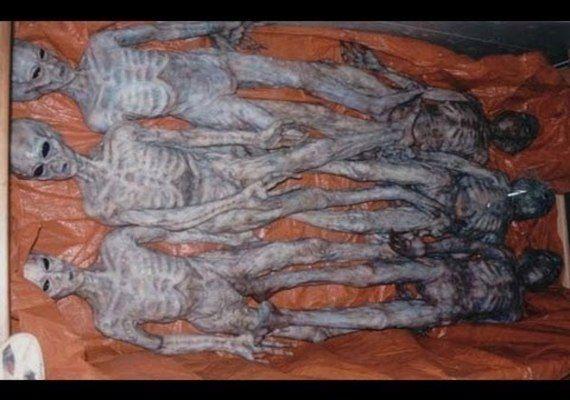 """O seguinte artigo foi publicado por Nick Redfern, do site mysteriousuniverse.org, e expõe uma história interessante sobre uma suposta testemunha militar, a qual, de acordo com Redfern, coloca dúvidas quanto a veracidade do fato de algumas bases militares nos EUA estarem armazenando cadáveres alienígenas reais. Veja: Neste último final de semana, fiz uma palestra na conferência anual """"Out of This World"""" (Fora Deste Mundo), em Edinburg, no Texas. O assunto: as misteriosas mortes no campo da…"""