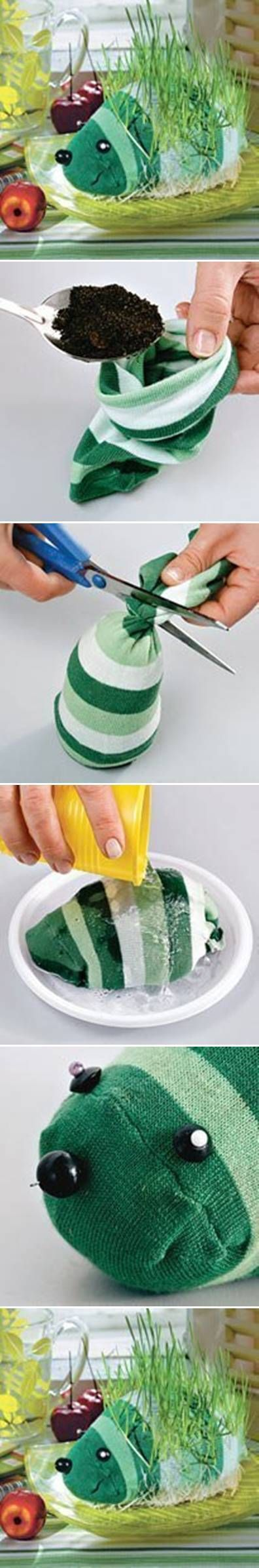 DIY Sock Growing Grass Hedgehog- cute gift idea for the 3 year olds in my life. :)