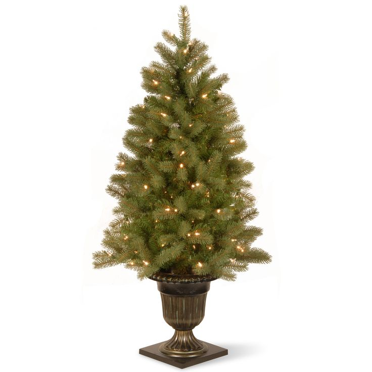 "Found it at Wayfair - Downswept Douglas Fir 4"" Green Fir Entrance Artificial Christmas Tree with 100 Pre-Lit Clear Lights with Urn Base"