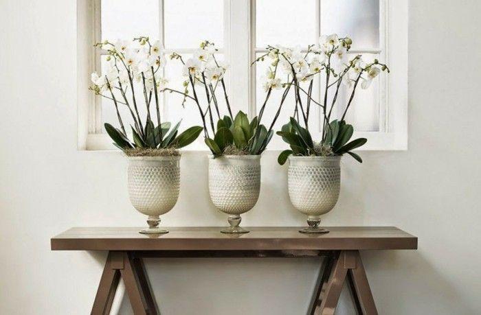 gruene zimmerpflanzen badezimmer gestalten tropisches klima