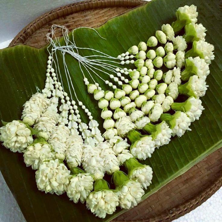 .Flores Frescas.