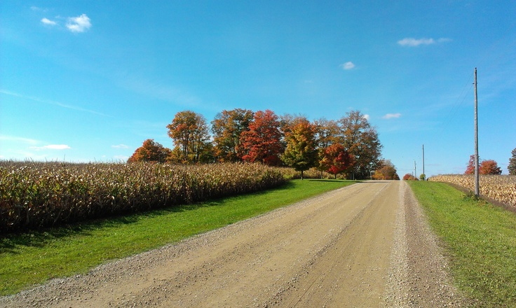 Farm on Township Road 8, between Blandford and Innerkip, Ontario