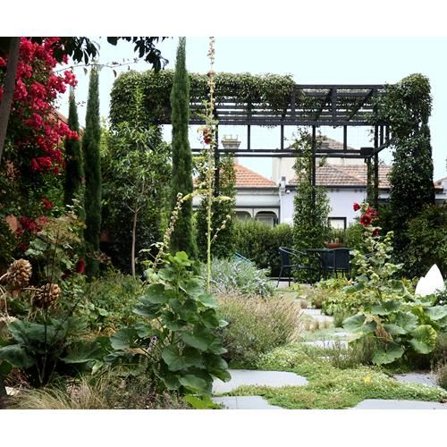 An entire city block in Melbourne hosts a wild but peaceful urban garden oasis with pergola, pond and overgrown plants.