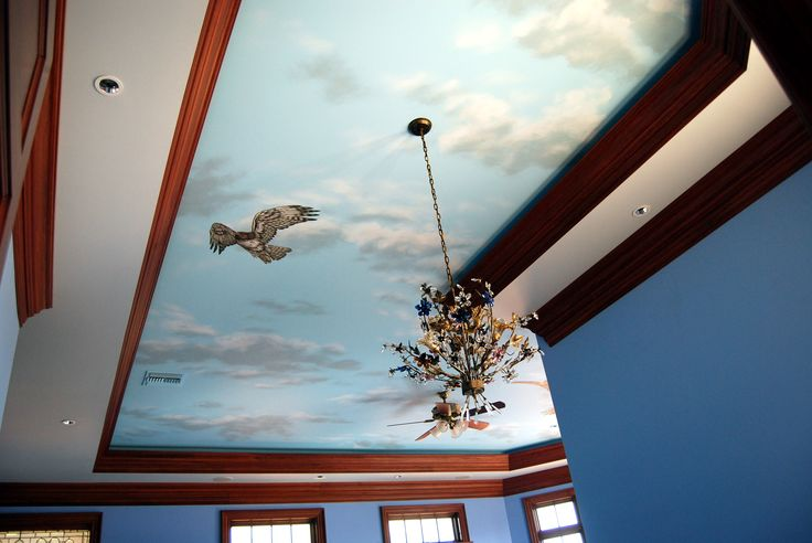 8 best images about sky ceiling with red tailed hawks by for Ceiling mural sky