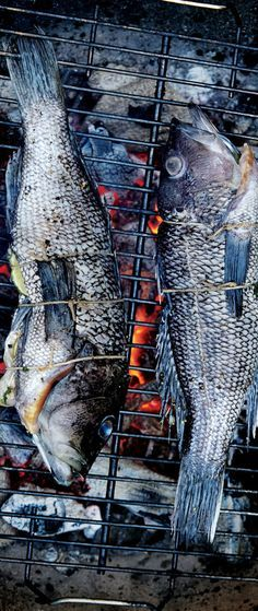 Awesome grilled fish recipes—fillets and whole fish.