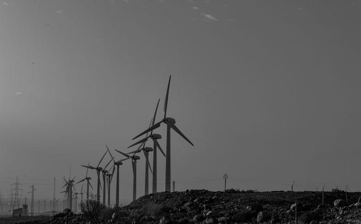 Gran Canaria - Les éoliennes de Las Palmas