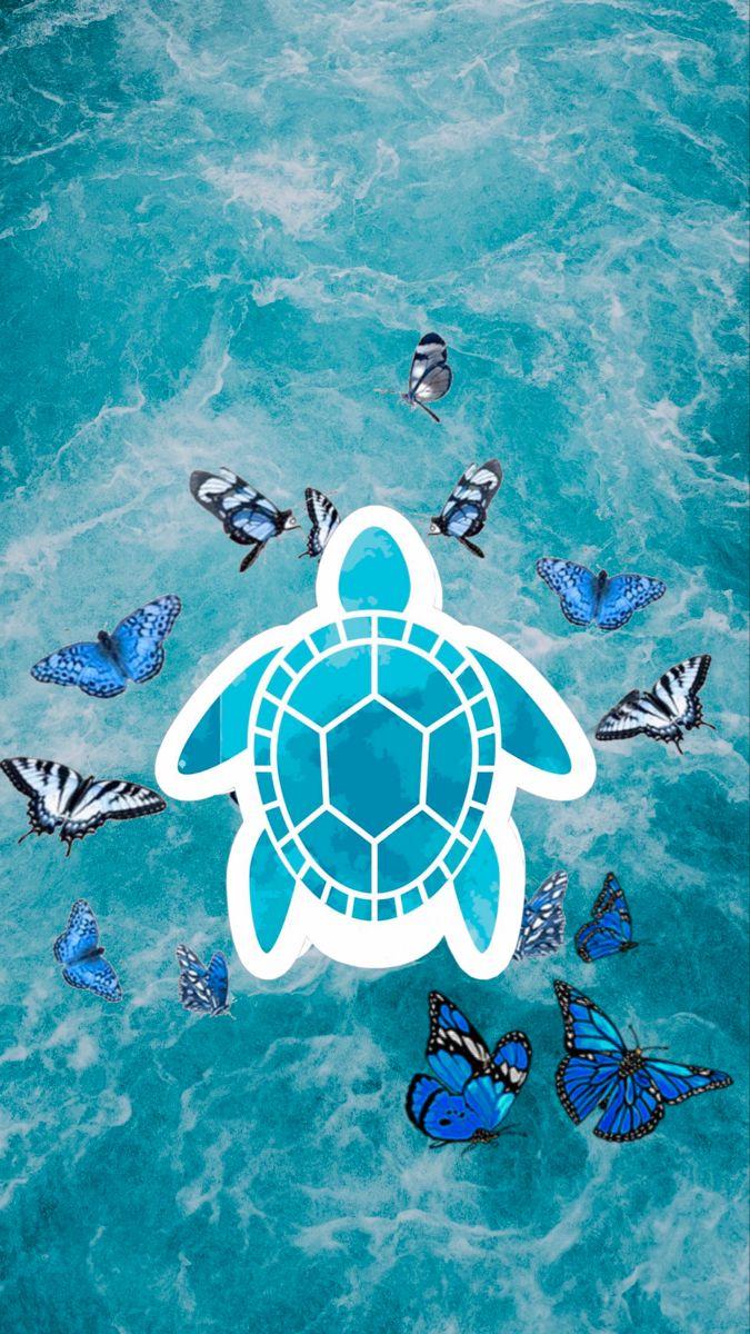 Turtle Butterfly Wallpaper Butterfly Wallpaper Turtle Wallpaper Wallpaper