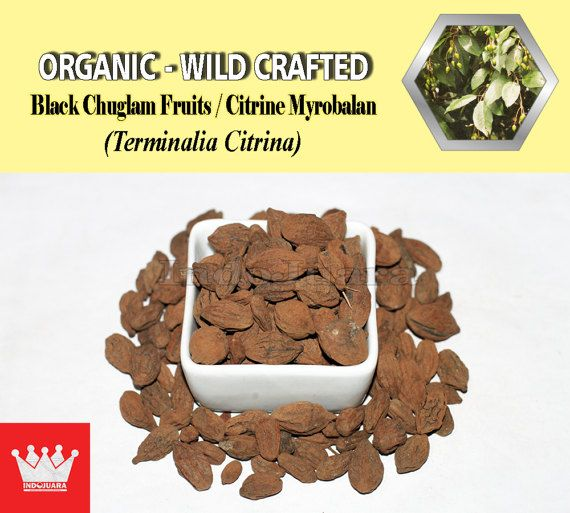 Chronic fever, loss of appetite, sexual stimulant, diarrhea, digestive disorders, anthelmintic, anti-inflammatory, analgesic, antipyretic remedy, asthma, constipation, boils, migraine, dental disorders, dizziness, hemorrhoids, anemia, eye diseases, infections, traumatic cuts, cardiac disorders, hepatomegaly and urolithiasis, etc #TerminaliaCitrina #DriedHerbs #HerbalMedicine #HerbalRemedies #HerbalTea