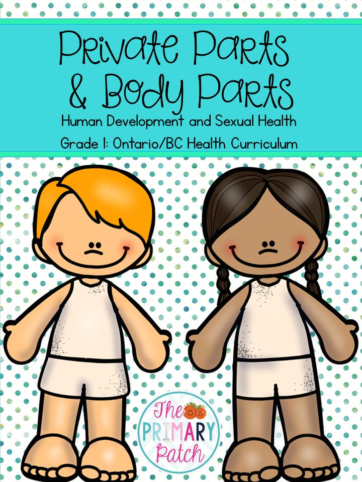 "Take the guess work and anxiety out of teaching young students to name and identity their private parts!  This 76 page unit will be a lifesaver for nervous teachers as well as a helpful guide for Health teachers, concerned parents, guidance counselors or administrators that are looking for a kid-friendly starting point to get discussion going.  Songs, games, diagrams (YES with genitalia!) and a ""Beginners Guide to Teaching Private Parts"" for teachers is included."