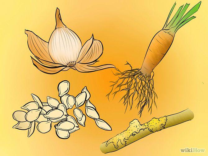 tintura naturale tessuti http://it.wikihow.com/Tingere-i-Vestiti