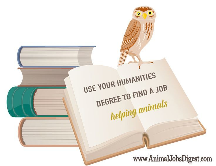use your humanities degree to find a job helping animals - Jobs With Animals Best Jobs Working With Animals