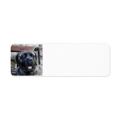 cane corso grey brindle label - labels customize diy cyo personalize
