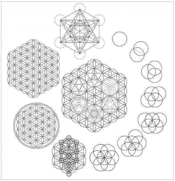 Sacred Geometry: seed, flower, and fruit of life.