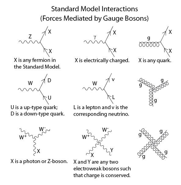 75 best richard feynman images on pinterest feynman diagram the above interactions form the basis of the standard model feynman diagrams in ccuart Choice Image