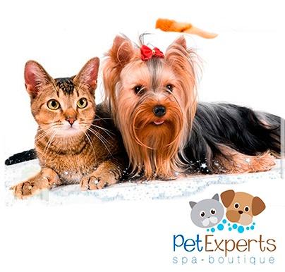 Tu mascota también quiere ir a su spa! 50% de Descuento en Baño + Corte de Uñas + Limpieza de Oídos + Corte de pelo, para perros y gatos desde $5.50 en Pet Experts