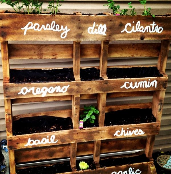 DIY pallet herb planter ideas cheap DIY ideas vertical garden designs