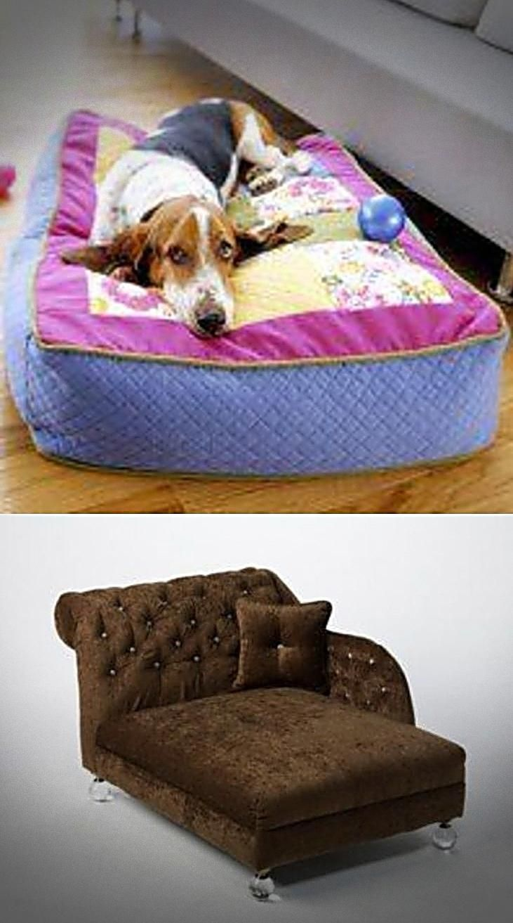 Best Doggie Beds For Both Large Small Dogs You Found It Large Dog Bed Dog Ramps For Bed Or Even See Details Orvis Cool Dog Beds Top Dog Beds Big