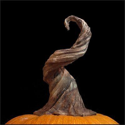Villafane Studios :: Pumpkin Vine Stem