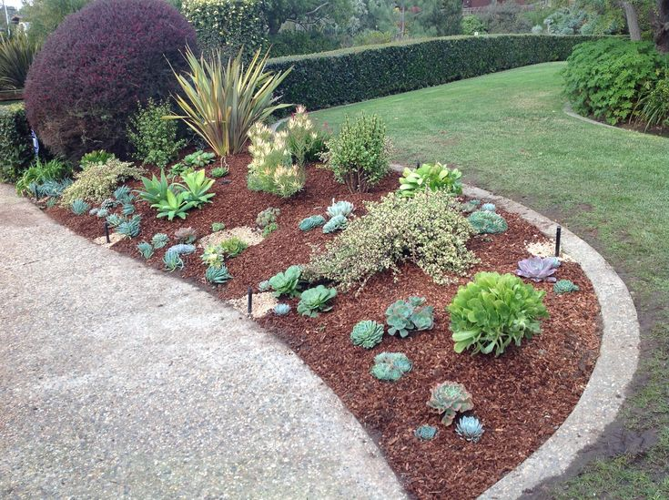 Image result for water wise landscaping
