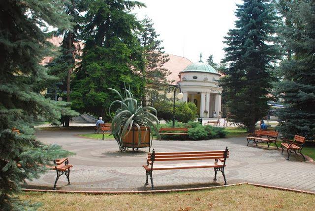 Polanica Zdj, Park Leśny, zielona metamorfoza