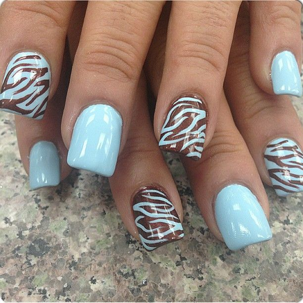 pastel blue and brown zebra print nail art design