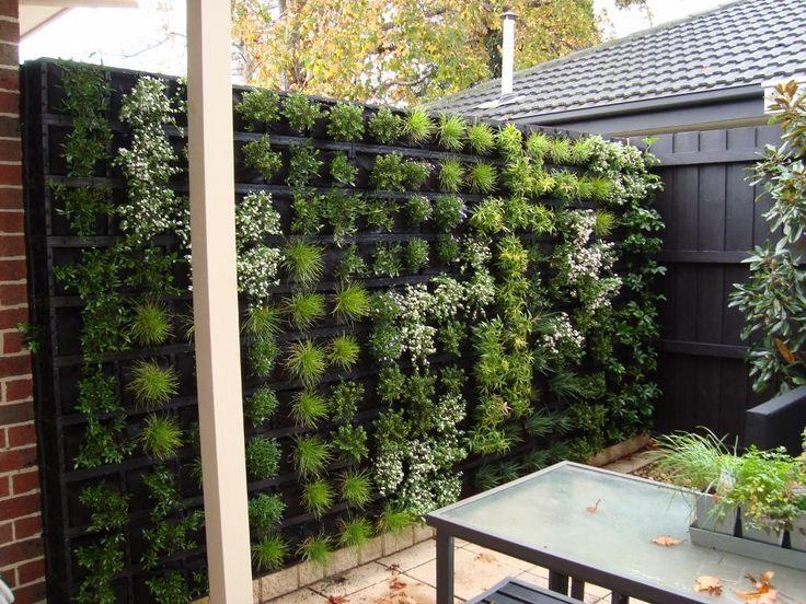 Vertical Garden Ideas Australia 54 best vertical gardens images on pinterest | vertical gardens