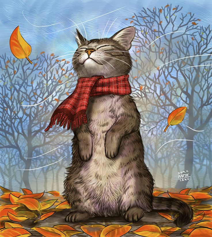"""Fall is in the air….FEEL THAT COOL NIP OF FRESH AIR…….GLAD I WORE MY NEW HAND-KNITTED SCARF……""""I'M READY MR. WINTE"""