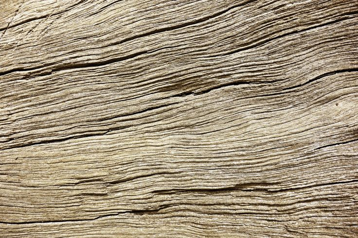 Natural Wood Texture by Inspirationfeed on Creative Market