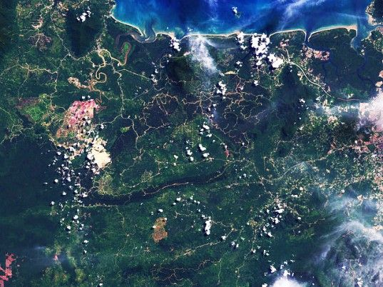Click through to read more: Google and Landsat Create Time-Lapse Videos Showing 40 Years of Environmental Destruction in the Amazon | Inhabitat - Sustainable Design Innovation, Eco Architecture, Green Building  landsat, satellite, borneo, deforestation, nasa, remote sensing, imaging, earth surface, data