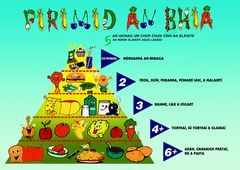Food Pyramid as Gaeilge (click through to the PDF to see it bigger)