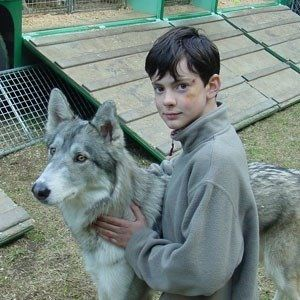 Skandar with a wolf from LWW. I think my brain just exploded from the cuteness level in this picture