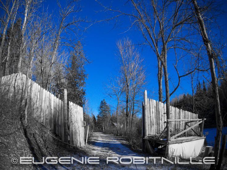Gate in winter