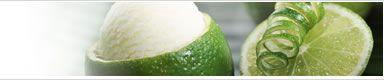 recette glaceSoupe glacée au melon Sorbet aux framboises Sorbet au cassis allégé Milkshake au citron et aux fruits rouges Pastèque glacée Milk-shake aux fruits Milkshake à la fraise Glace au citron allégée Glace au citron minceur Glace au chocolat allégée Smoothie de kiwis Sorbet au piment Petites sucettes glacées Sorbet d'été aux fruits rouges Sorbet de framboises light Papillotes d'ananas coco