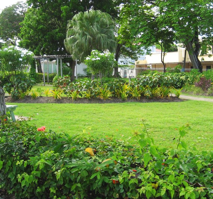 Explore this amazing city park, right in the heart of Bridgetown: Queen's Park!