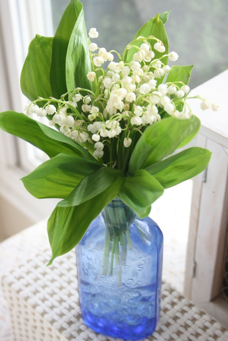 80 best lilly of the valley 76 images on pinterest lily of the antique lily of the valley jewelry izmirmasajfo Gallery