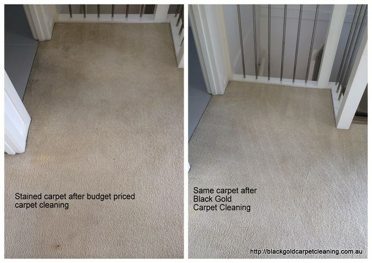 "Moving House? This blog was inspired by the following customer review; ""Extremely professional & very passionate about his work. My carpets had plenty of stains, marks, rust, chewing gum and they got removed. He will try everything to remove marks & stains. These stains were not removed by 2 carpet cleaningcompanies before him."" http://blackgoldcarpetcleaning.com.au/vacate-carpet-cleaning-melbourne/"