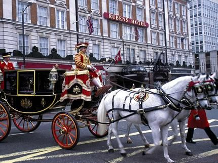 Alojamiento 71811_rubens-at-the-palace-red-carnation-london con mascota