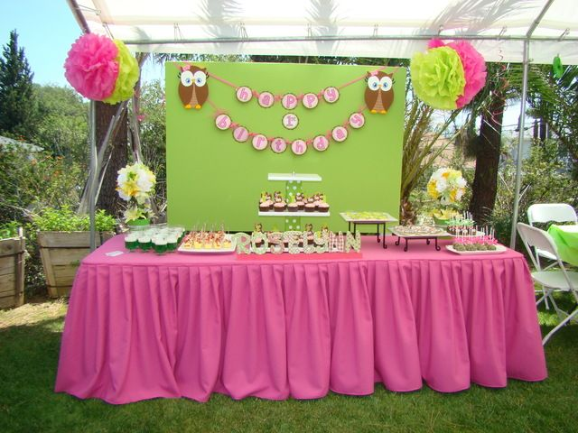 29 best Look Whoos 1 Girl Owl Birthday Party Ideas images on