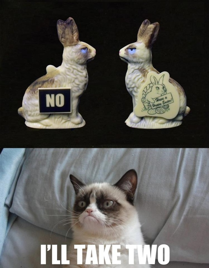 Grumpy Cat Laugh Meme