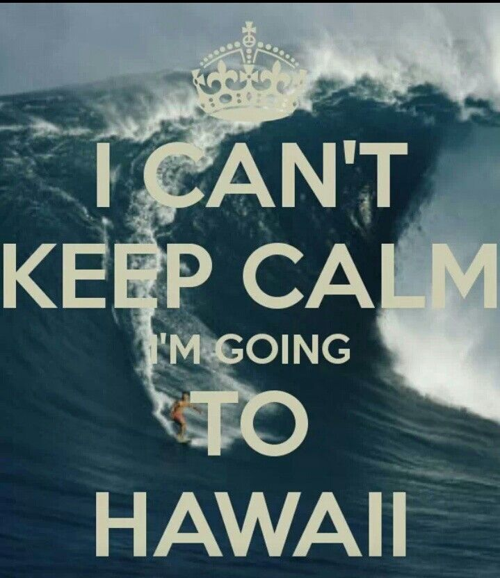 I can't keep calm I'm going to Hawaii...I love it!