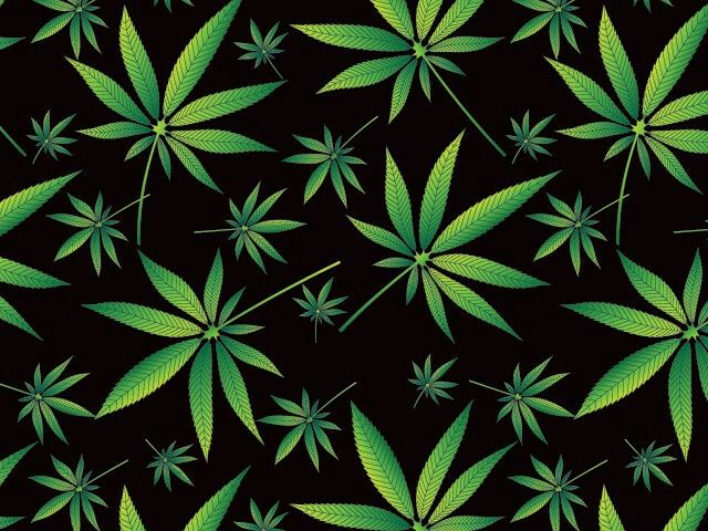 153 best Weed images on Pinterest