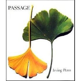 Passage - Irving Penn