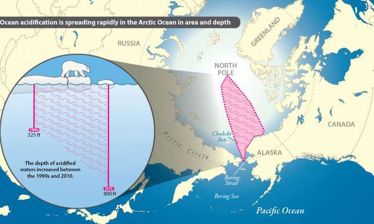 Arctic ocean acidification. Between the 1990s and 2010, acidified waters expanded northward approximately 300 nautical miles from the Chukchi slope off the coast of northwestern Alaska to just below the North Pole. Also, the depth of acidified waters was found to have increased, from approximately 325 feet to over 800 feet (or from 100 to 250 meters). This threatens marine life.