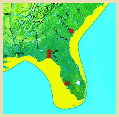 Pre Ice Age World Map.The Florida Coast During The Last Ice Age Pre Clovis Sites In The